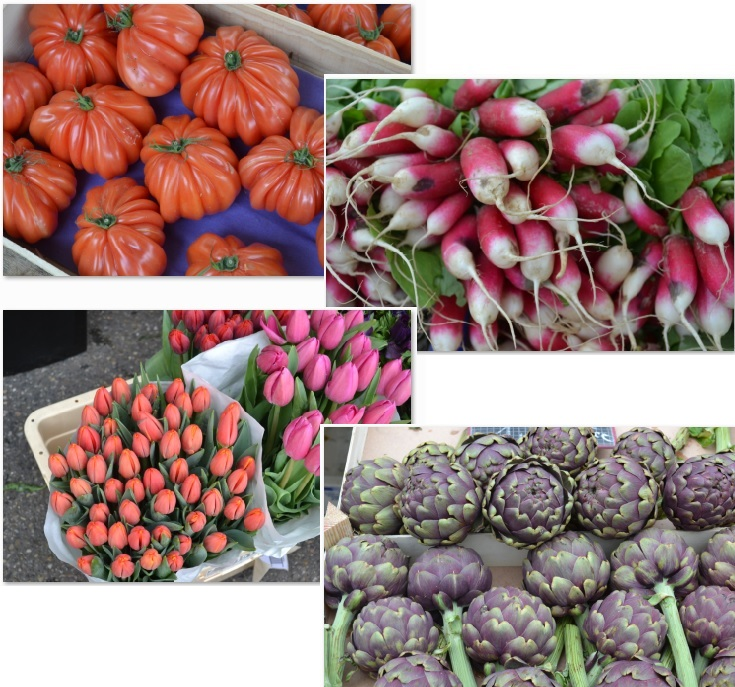 Festive colors of the produce & flowers at the Vienne market!